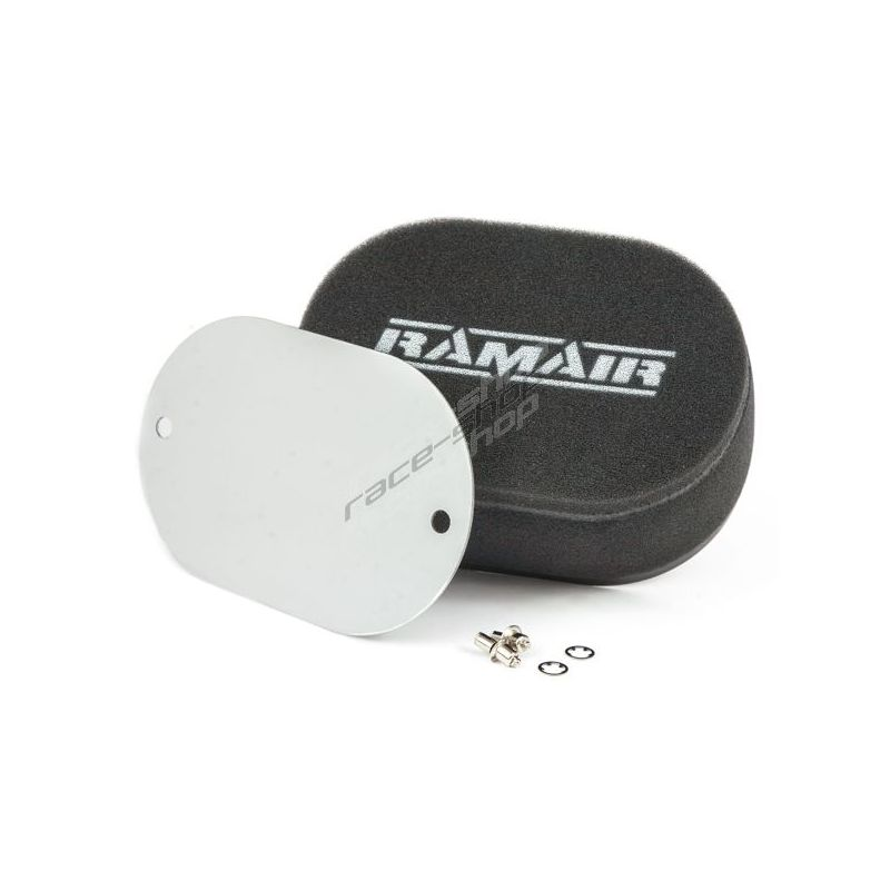 RAMAIR Carb Air Filter With Baseplate Weber 32//36 DGAV 40mm Internal Height