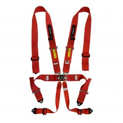 FIA 6 point safety belts RACES, red