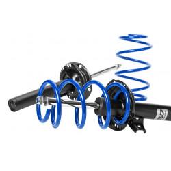 Sport suspension kit AP for AUDI A4, 04/02-, 45/25mm