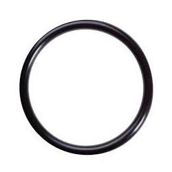 Spacer plate O ring Weber